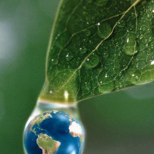 Bio Verde y Clima