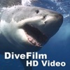 DiveFilm HD Video