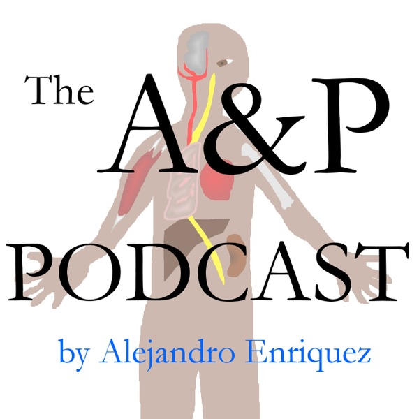 The A&P Podcast