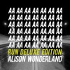 Alison Wonderland - U Don�t Know  feat. Wayne Coyne