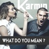 What Do You Mean? - Single, Karmin
