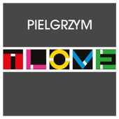 T.Love - Pielgrzym (Radio Edit) artwork