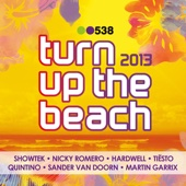 538 Turn Up the Beach 2013