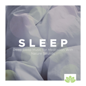 Sleep: Deep Sleep Music for Meditation With Nature Sounds, White Noise, Gentle Sound of Rain, Ocean Waves and Tranquil Music