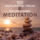 50 Instrumental Tracks & Nature Sounds: Meditation, Relax, Zen Music for Yoga Class Exercises and Better Health