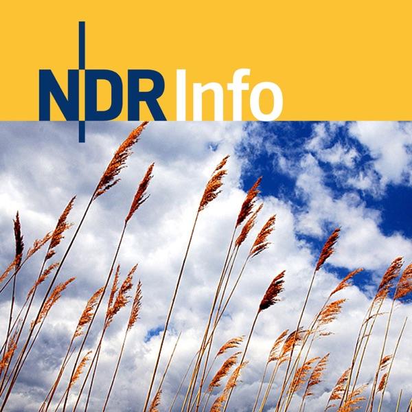 NDR Info - Blickpunkt: Diesseits