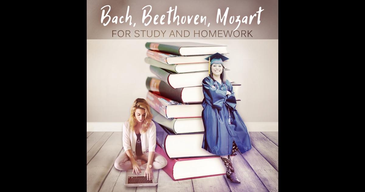 Best Music For Homework