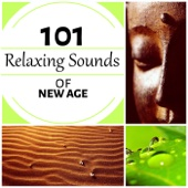Relaxing Sounds of New Age 101 - Healing Affirmations, Mindfulness and Serenity Spa Music, Sleep Deep meditation, Fulfilled Meditation
