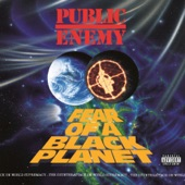 Liz Phair - Exile in Guyville vs. Public Enemy - Fear of a Black Planet: Match #37