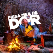 What's Up - Piesa Mea De Dor artwork