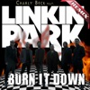 Burn It Down (feat. LINKIN PARK) - Single
