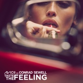 Avicii & Conrad Sewell - Taste the Feeling  arte