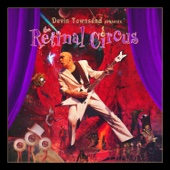 The Retinal Circus (Live) cover art