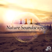 Nature Soundscapes: Peaceful & Relaxing Music for Health, Visualization, Acupuncture, Pilates, Reiki, Yoga, Reflexology