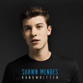 Handwritten - Shawn Mendes