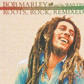 Roots, Rock, Remixed: The Complete Sessions