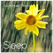 Sleep to Summer Rain