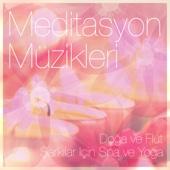 Meditasyon Müzikleri: Doğa ve Flüt, Şarkılar Için Spa ve Yoga - Müzik için Spa
