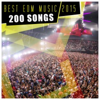 Best EDM Music 2015 - Various Artists