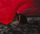 Aimer - Brave Shine アートワーク