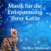 Musik für die Entspannung Ihrer Katze