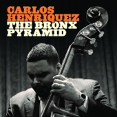 Carlos Henriquez - The Bronx Pyramid  artwork
