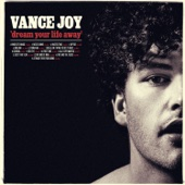 Vance Joy - Dream Your Life Away (Special Edition)  artwork