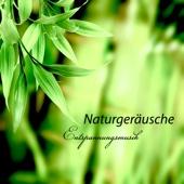 Naturgeräusche Entspannungsmusik - Beste New Age Meditationsmusik und Wellness Spa Music für Tiefentspannung