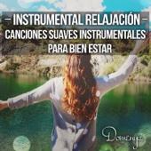 Instrumental Relajación: Canciones Suaves Instrumentales para Bien Estar y Pensar en Positivo, Música Calmante, Meditación Relajante, Manejo del Estrés