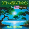 Deep Ambient Moods for Sleep Learning Music to Sleep To