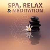 Spa, Relax & Meditation: Top 100 Relaxing Tracks for Gentle Massage, Deep Meditation, Complete Relax