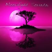 Moonlight Sonata, Piano Sonata No. 14 In C Sharp Minor, Op.27 No.2 - The Piano Girl