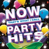 Various Artists - NOW That's What I Call Party Hits artwork