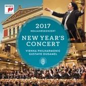 New Year's Concert 2017 (Neujahrskonzert 2017)