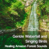 Gentle Waterfall and Singing Birds: Healing Amazon Forest Sounds, Calm Nature, Relaxing Instrumental New Age Music - Zen Moods for the Spa Experience, Yoga & Meditation - Music to Relax in Free Time