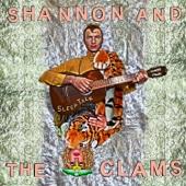 Shannon and The Clams - Sleep Talk artwork