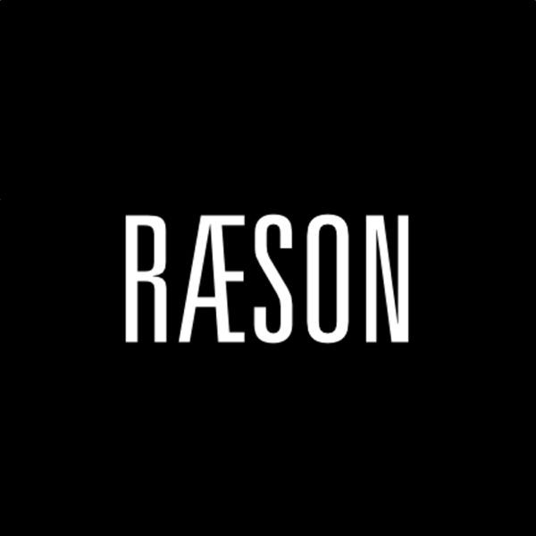 RÆSON - dansk og international politik