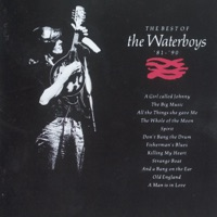 The Best of the Waterboys (1981-1990) - The Waterboys