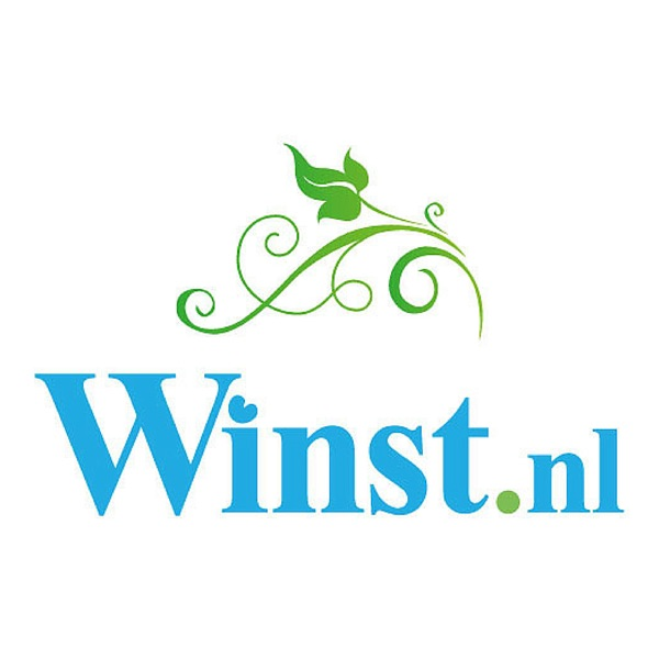 De Winst.nl Podcast