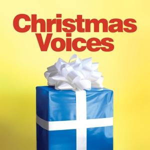 I Need You (Christmas Mix)