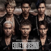Ray - EXILE THE SECOND