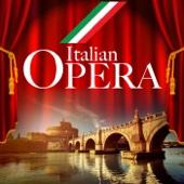 Italian Opera - Various Artists