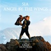 Angel by the Wings Single