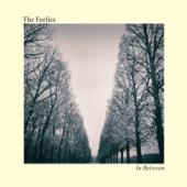 In Between, The Feelies