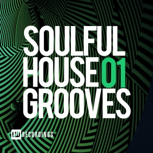 Soulful House 01 Grooves - Various Artists