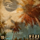 Did You Know? - Fiji Cover Art