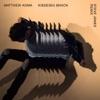 Kisses Back (Steve James Remix) - Single, Matthew Koma