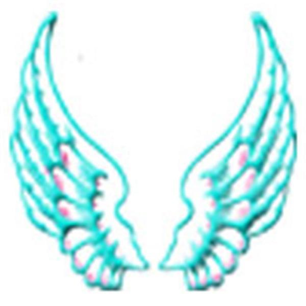 The Seraphim Angel Twin Flame Show