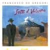 Francesco De Gregori - La donna cannone (Live 2016) ilustración