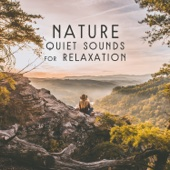 Nature Quiet Sounds for Relaxation - Inner Peace, Positive Vibration and Meditation, Natural Balance Your Body and Soul